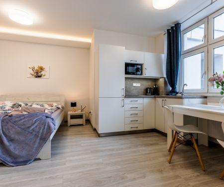 Apartamento para arrendar  - Brno-Stred - Trnita
