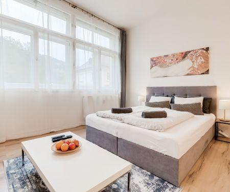 Mieszkanie do wynajęcia - Praga 1 - Mala Strana