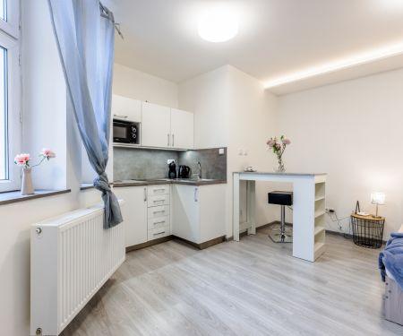 Bérelhető lakások - Brno-Stred - Trnita