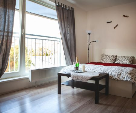 Flat for rent  - Brno-Stred - Veveri