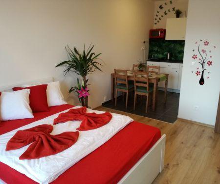 Flat for rent  - Prague 5 - Hlubocepy