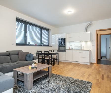 Flat for rent  - Prague 7 - Holesovice