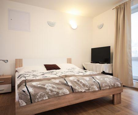 Mieszkanie do wynajęcia - Praga 4 - Hodkovicky
