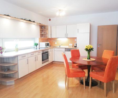 Wohnung zu vermieten - Brünn-Kralovo Pole