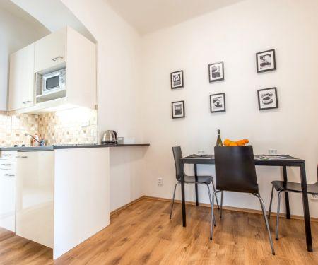 Flat for rent  - Praha 1 - Nové Město, 1+1