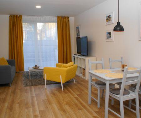Flat for rent  - Praha 6 - Dejvice, 2+kk