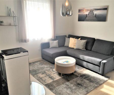 Mieszkanie do wynajęcia - Milná