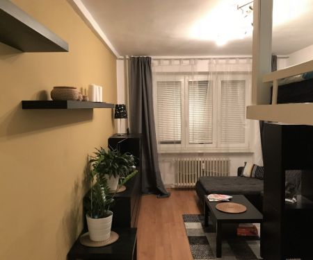 Flat for rent  - Brno-Stred - Stare Brno