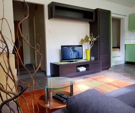 Flat for rent  - Prague 7 - Holesovice