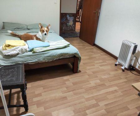Rooms for rent  - Matosinhos