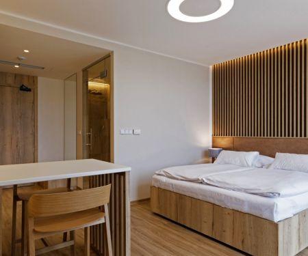 Wohnung zu vermieten - Brünn-Stred - Pisarky