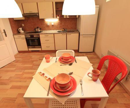Mieszkanie do wynajęcia - Praga 2 - Vinohrady