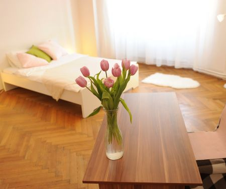 Rooms for rent  - Brno-Stred - Brno-mesto