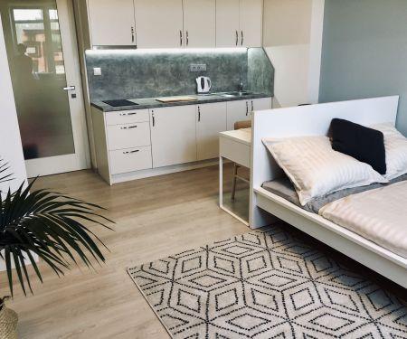 Wohnung zu vermieten - Prag 7 - Holesovice