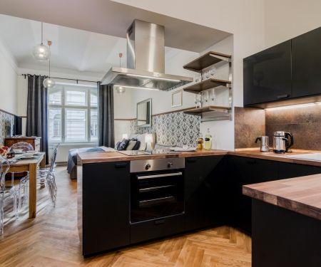 Mieszkanie do wynajęcia - Praga 3 - Zizkov