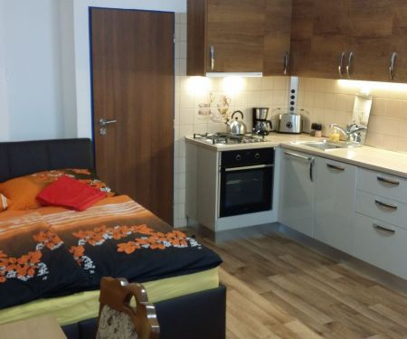 Rooms for rent  - Prague 6 - Stresovice
