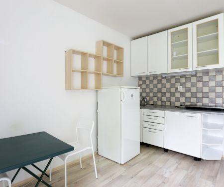 Mieszkanie do wynajęcia - Brno-Lisen