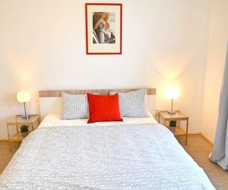 Flat for rent  - Brno-Zabovresky