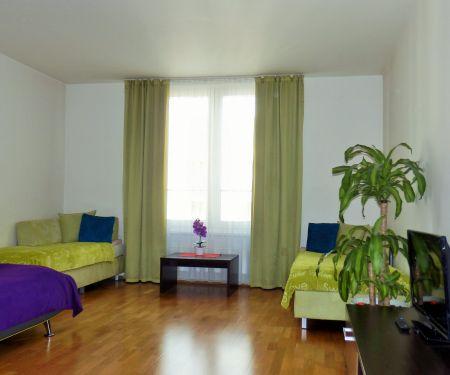 Wohnung zu vermieten - Prag 5 - Smichov