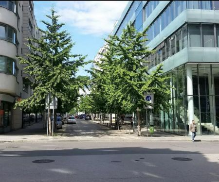 Bérelhető lakások - Prága 5 - Smichov