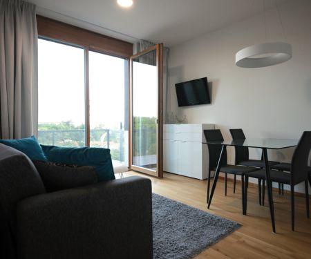 Flat for rent  - Prague 8 - Liben