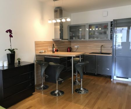 Mieszkanie do wynajęcia - Praga 7 - Holesovice