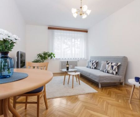 Flat for rent  - Prague 3 - Vinohrady