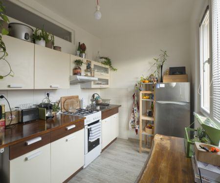 Flat for rent  - Prague 6 - Vokovice