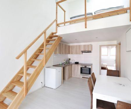 Wohnung zu vermieten - Brünn-Stred - Veveri