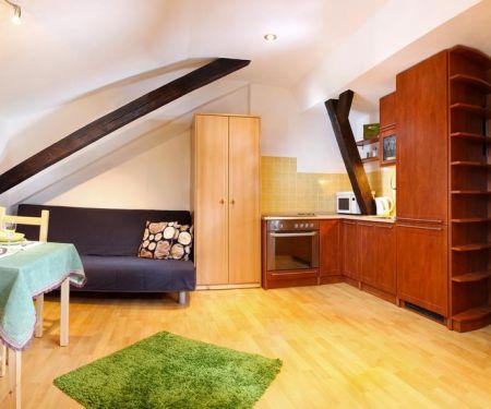 Mieszkanie do wynajęcia - Brno-Stred - Styrice