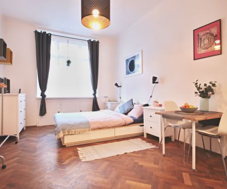 Flat for rent  - Prague 6 - Dejvice