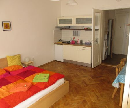 Flat for rent  - Prague 3 - Zizkov
