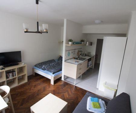 Wohnung zu vermieten - Brünn-Stred - Zabrdovice