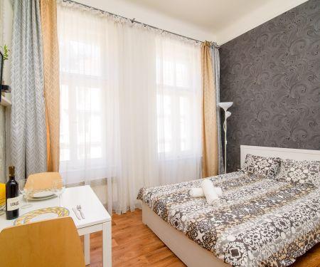 Byt k pronájmu - Praha 3 - Žižkov, 1+kk