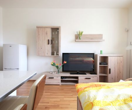 Flat for rent  - Prague 10 - Vrsovice