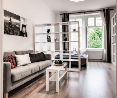Flat for rent  - Prague 10 - Vinohrady