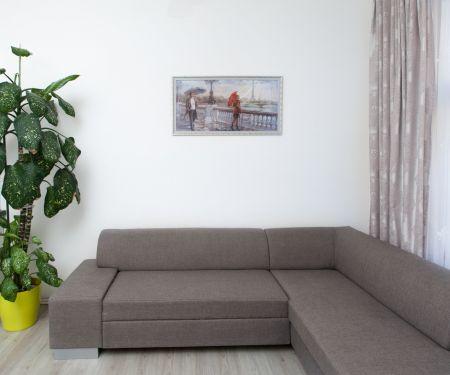 Аренда квартиры - Прага 3 - Zizkov